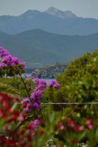 Monte Capanne e Golfo Stella
